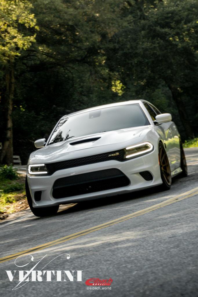 Dodge Charger | RFS 1.3